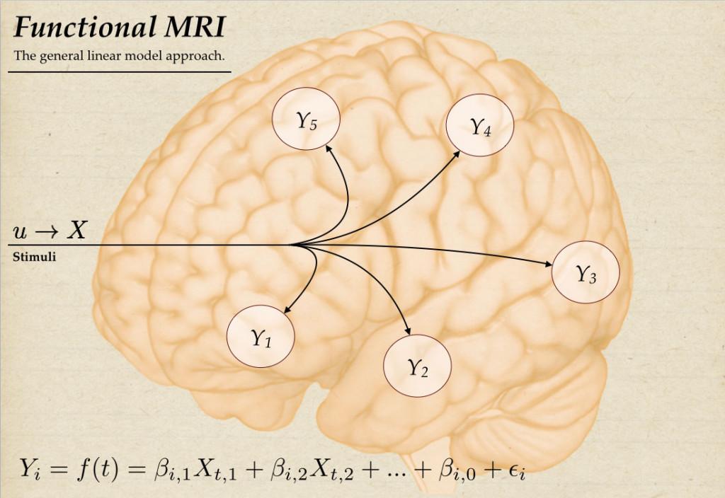 fMRIvsDCM_fMRI